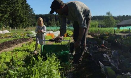 The most northern permaculture farm in the world